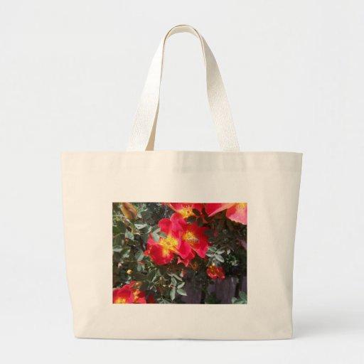 Flores rojas bolsas