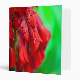 "Flores rojas bonitas carpeta 1"""