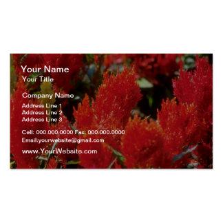 Flores rojas brillantes de las flores plantillas de tarjetas de visita