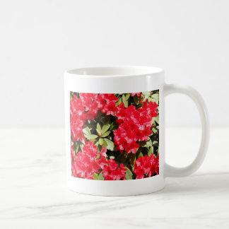 Flores rojas brillantes del rododendro taza de café