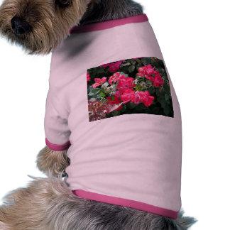 Flores rojas con el fondo verde camiseta con mangas para perro