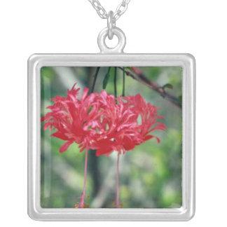Flores rojas con las flores largas de los estambre grimpolas personalizadas