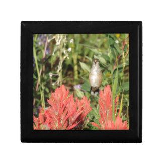 flores rojas coralinas del colibrí joyero cuadrado pequeño