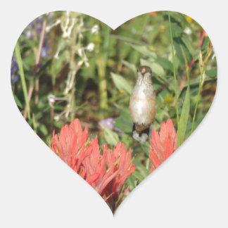 flores rojas coralinas del colibrí pegatina en forma de corazón