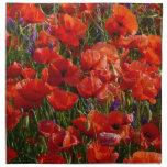 Flores rojas de la amapola servilletas