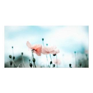 Flores rojas de la amapola tarjetas fotográficas personalizadas