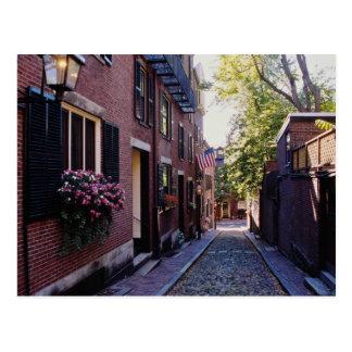 Flores rojas de la calle de la bellota del guijarr postales