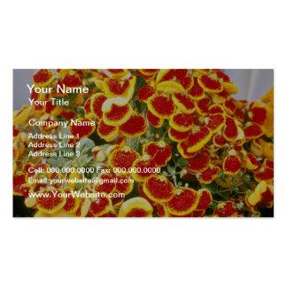 Flores rojas de la flor del deslizador de la espec plantillas de tarjetas personales