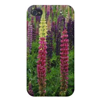 Flores rojas de los altramuces iPhone 4 funda