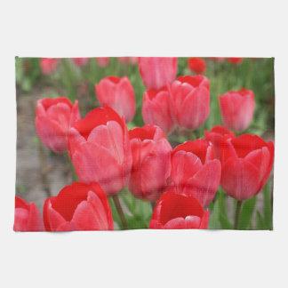 Flores rojas de los tulipanes toalla