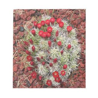 Flores rojas del cactus, Utah, los E.E.U.U. Bloc De Notas