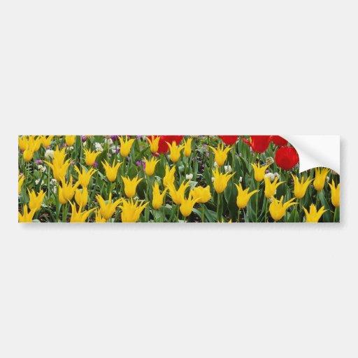 Flores rojas del cerezo y de los tulipanes pegatina para auto