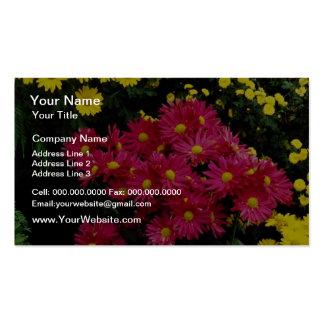 Flores rojas del crisantemo del verano tarjetas de visita