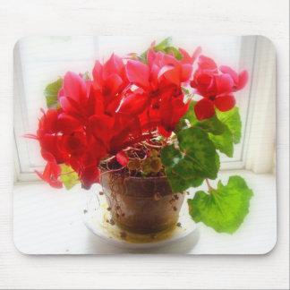 Flores rojas del Cyclamen Tapete De Raton