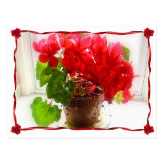 Flores rojas del Cyclamen Tarjetas Postales