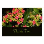 flores rojas del jardín, gracias cardar tarjetas