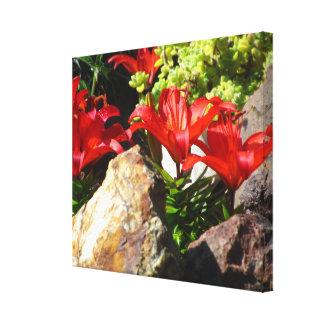Flores rojas del lirio lona envuelta para galerias
