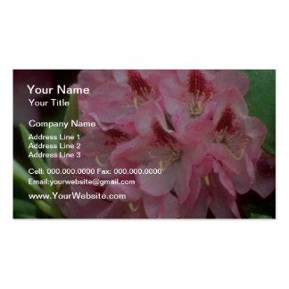 Flores rojas del rododendro tarjetas personales