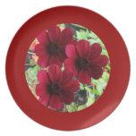Flores rojas en la placa roja plato para fiesta