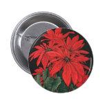 Flores rojas florecientes del Poinsettia del navid Pins