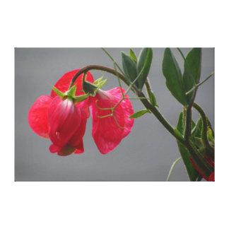 Flores rojas hermosas impresión en lienzo