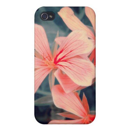Flores rojas i iPhone 4 cárcasa
