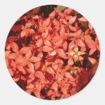Flores rojas pegatina redonda