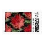 Flores rojas sellos