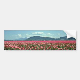 Flores rojas y blancas del campo del tulipán pegatina de parachoque