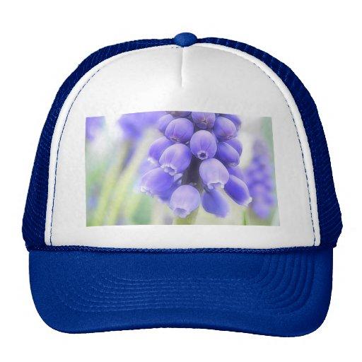 Flores románticas del jacinto de uva gorro