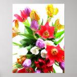 Flores románticas del tulipán de la primavera poster
