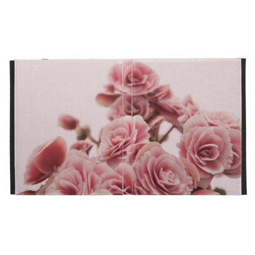 Flores rosadas bonitas