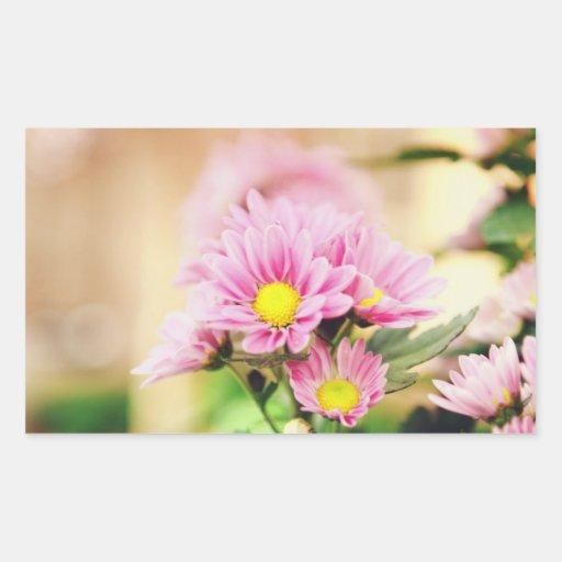 Flores rosadas bonitas del jardín rectangular pegatinas