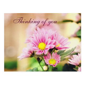 Flores rosadas bonitas del jardín tarjeta postal