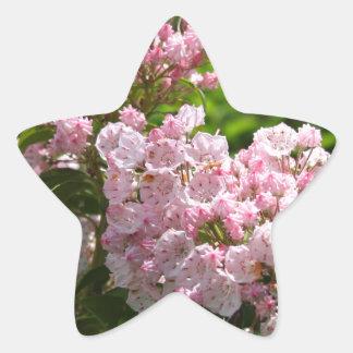 Flores rosadas bonitas del laurel de montaña pegatina en forma de estrella