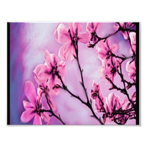 Flores rosadas bonitas fotografía