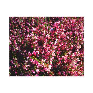 Flores rosadas bonitas impresión en lienzo estirada