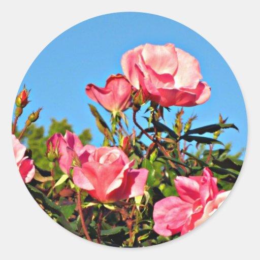 Flores rosadas bonitas pegatina redonda