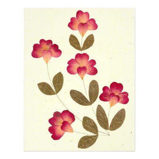 """Flores rosadas brillantes presionadas del tubo folleto 8.5"""" x 11"""""""