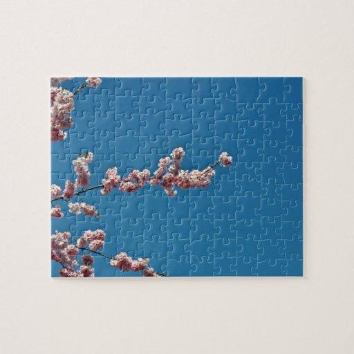 Flores rosadas contra el cielo azul puzzles con fotos