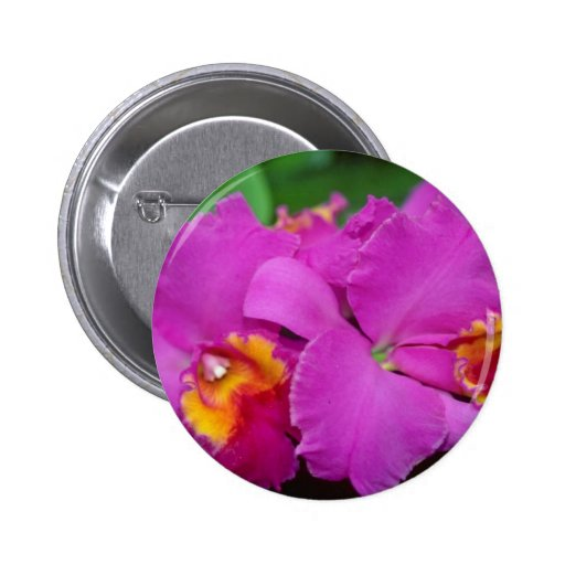 Flores rosadas de Cattleya Pin Redondo 5 Cm