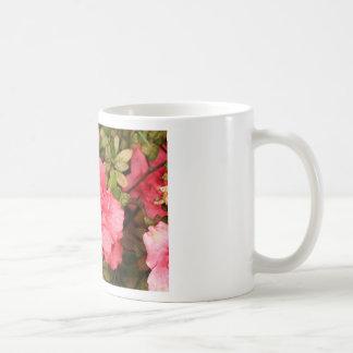 Flores rosadas de la azalea en la floración taza