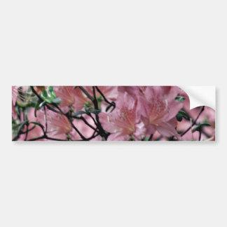 Flores rosadas de la azalea pegatina para auto