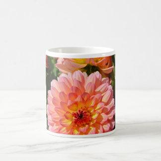 Flores rosadas de la dalia en la floración taza de café