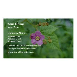 Flores rosadas de la frambuesa floreciente (Rubus  Plantilla De Tarjeta De Visita