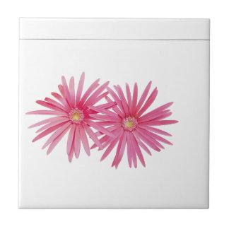 Flores rosadas de la margarita tejas  cerámicas