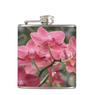 Flores rosadas de la orquídea