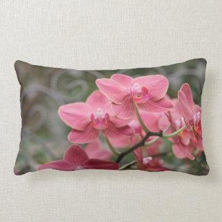 Flores rosadas de la orquídea cojines