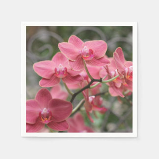 Flores rosadas de la orquídea servilleta de papel