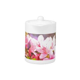 Flores rosadas de la primavera